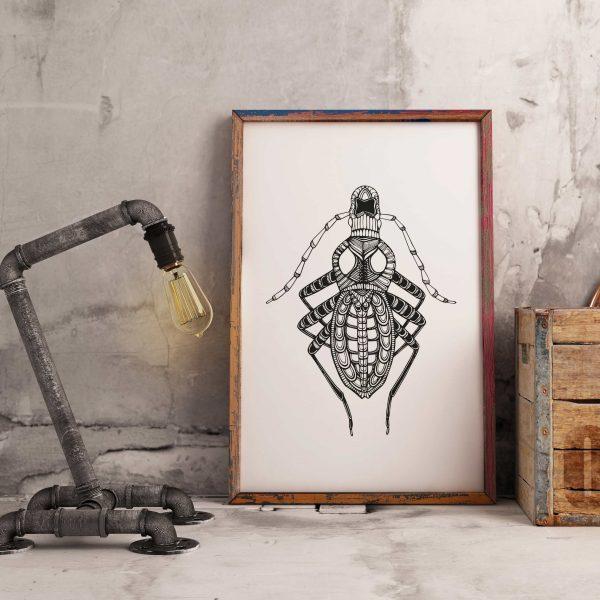 Blattodea – Respect
