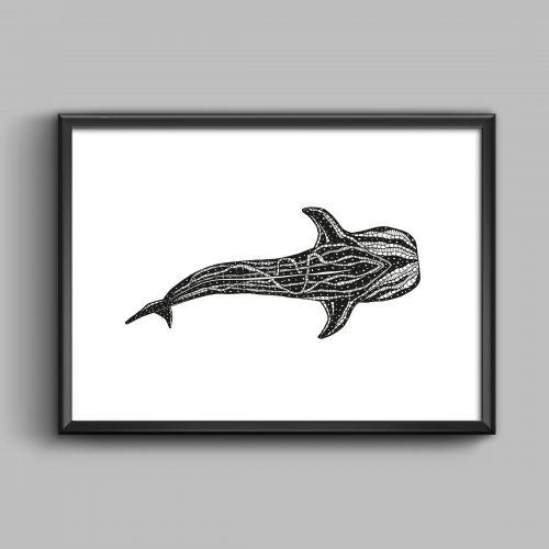 Whale Shark – The Ocean
