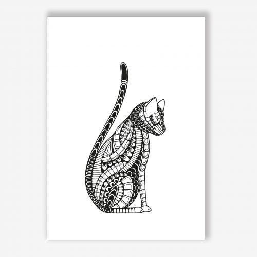 Cat – Adopt a cat