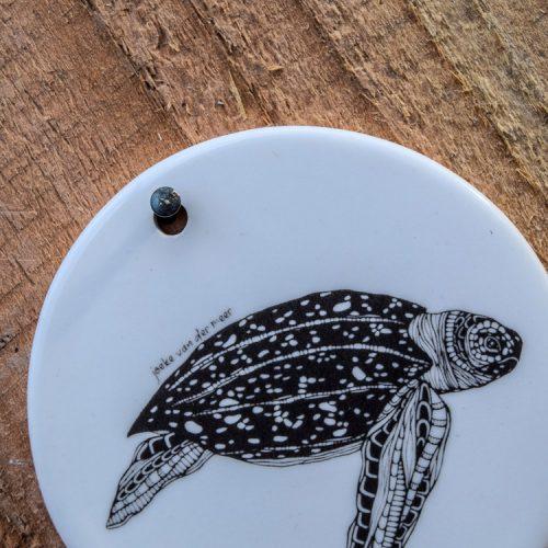 Token Turtle