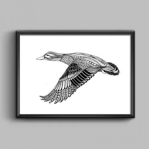 Artprint Duck