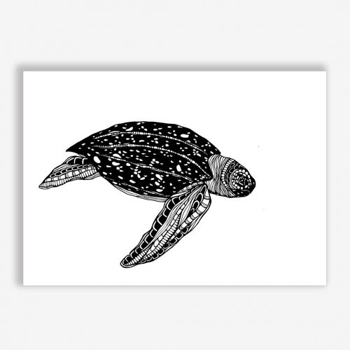 Artprint Leatherback Turtle