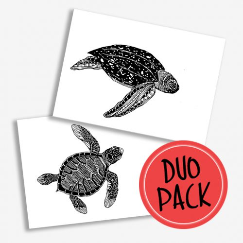 Duo Pack Artprints Turtles