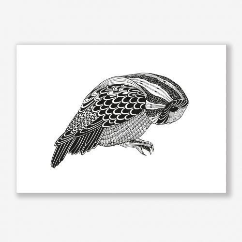 Artprint Owl