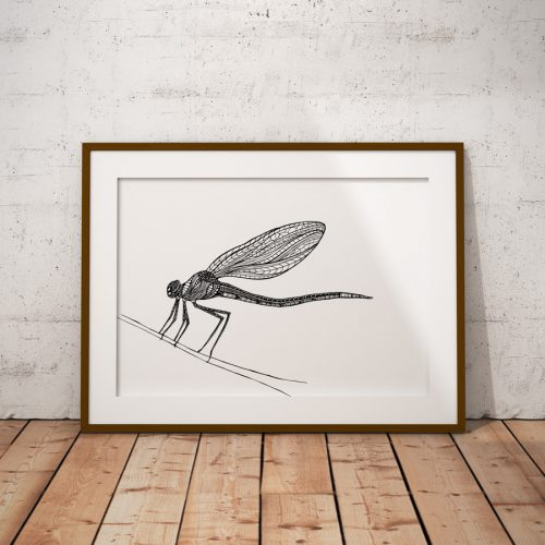 Artprint Dragonfly