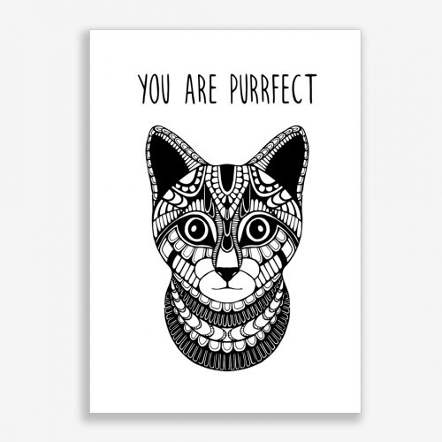 Artprint Kitten with Text
