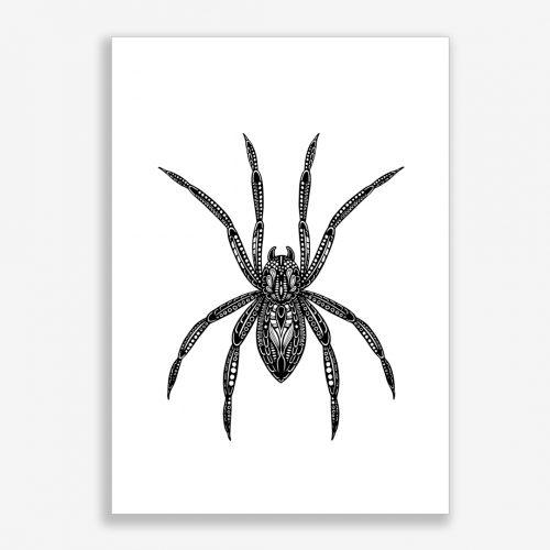 Artprint Spider